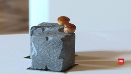 VIDEO: Kue Batu Jalanan Paris Menangkan Penghargaan