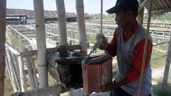 Para petani menggunakan air dari sumur, bukan dari laut untuk bahan baku pembuatan garam. (ANTARA FOTO/Yusuf Nugroho)