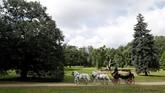 Sebuah peternakan kuda di Kladruby, Republik Ceko diakui sebagai situs warisan dunia UNESCO. (REUTERS/David W Cerny)