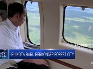 Forest City Jadi Konsep Ibu Kota Baru