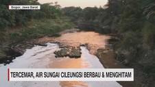 VIDEO: Tercemar, Air Sungai Cileungsi Berbau & Menghitam