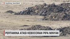 VIDEO: Minyak Mentah Cemari Pesisir Utara Karawang