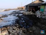 Tumpahan Minyak di Laut Jawa, Ternyata Ini Sebabnya!