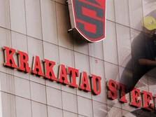 Biar Krakatau Steel Selamat, Ini Solusi dari Komisaris