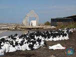 Nelayan Jadi Buruh Angkut Akibat Tumpahan Minyak Pertamina,