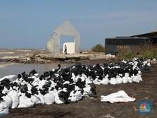 Waduh, Belasan Tahun Laut RI Tercemar Minyak dari Kapal Asing