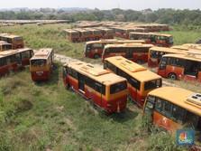 Pengakuan Mengejutkan Bos TransJakarta Soal 'Kuburan' Bus