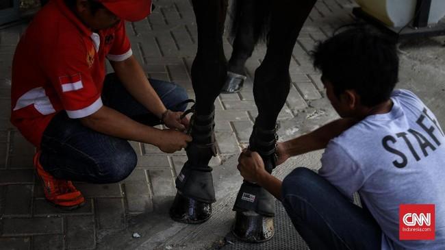 Di sebuah istal, petugas membersihkan badan kuda tunggangan sejumlah atlet berkuda Indonesia. (CNN Indonesia/Hesti Rika)