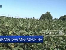 Harap-Harap Cemas Menanti Perundingan AS-China