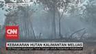 VIDEO: Kebakaran Hutan Kalimantan Meluas
