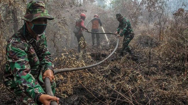 Petugas dari Satgas Karhutla Provinsi Riau berusaha memadamkan bara api yang membakar lahan gambut di Desa Karya Indah, Kabupaten Kampar, Riau, 26 Juli 2019. (ANTARA FOTO/Rony Muharrman)