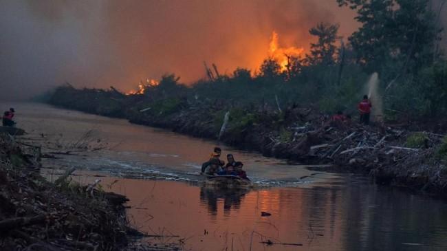Berdasarkan data Badan Nasional Penanggulangan Bencana (BNPB) kebakaran hutan dan lahan hingga Juli 2019 luasnya lebih dari 27 ribu hektare, dan kini masih terus meluas di Kabupaten Pelalawan dan Siak. (ANTARA FOTO/FB Anggoro)