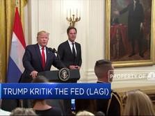 Trump Kritik The Fed 'Kalah Berani' Dari China Dan UE