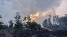 Polri Tetapkan 362 Tersangka Karhutla se-Indonesia