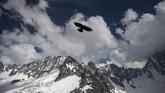 Seekor burung terbang di atas area pendakian Aiguille des Leschaux and the Grandes Jorasses, Chamonix, selatan Prancis. (AFP Photo/Marco Betorello)
