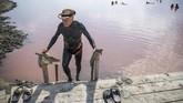 Setelah lumpur mengering, orang-orang akan membersihkannya di air alkali atau langsung berenang di Laut Hitam yang terdapat tepat di seberang alang-alang. (NIKOLAY DOYCHINOV / AFP)