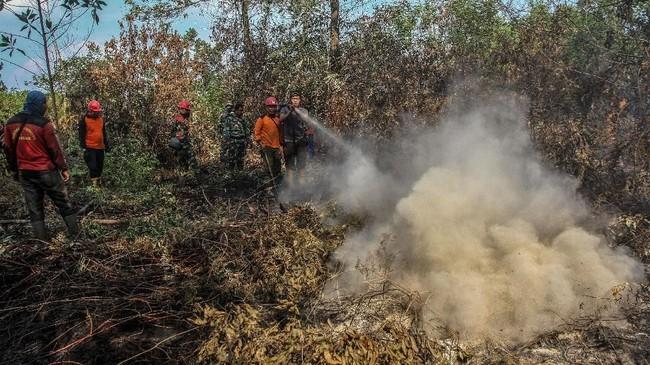 Tim Satgas Karhutla terus melakukan upaya pemadaman di sejumlah daerah agar kebakaran hutan dan lahan di Provinsi Riau tidak semakin meluas. (ANTARA FOTO/Rony Muharrman)