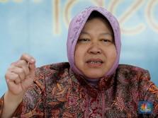 Dinilai Layak Jadi Menteri Jokowi, Risma: Gak Ada yang Nawari