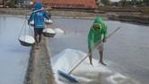 Gubernur Jawa Timur Khofifah Indar Parawansa mengusulkan agar pemerintah pusat membentuk data tunggal terkait produksi dan perdagangan garam. Tujuannya, untuk menstabilkan harga garam di dalam negeri. (ANTARA FOTO/Saiful Bahri).