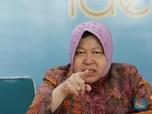 Diangkat Jokowi Jadi Mensos, Ini Profil Tri Rismaharini
