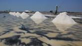 Petambak garam menilai harga jatuh karena pasokan berlimpah. Di sisi lain, penyerapannya rendah. Petambak garam juga mensinyalir garam impor membanjiri pasar dalam negeri. (ANTARA FOTO/Dedhez Anggara).