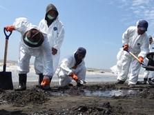 Ini Cerita di Balik Tumpahan Minyak Laut Jawa