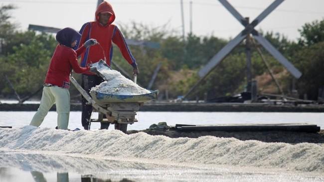 Usulan menyetop garam impor juga diamini para petambak garam. Forum Petambak Garam Madura (FPGM) bahkan sempat menggelar acara doa bersama agar pemerintah menghentikan aktivitas impor garam. (ANTARA FOTO/Umarul Faruq).