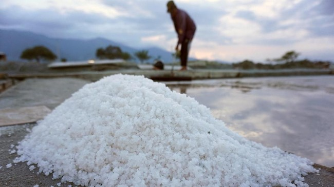 Khofifah menuturkan persoalan garam di dalam negeri akibat pasokan berlebih. Bahkan, pasokan garam tahun 2018 lalu, tidak seluruhnya terserap. Tak heran, harga garam anjlok. (ANTARA FOTO/Mohamad Hamzah).