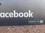 Zuckerberg Tolak Hapus Postingan Trump, Staf Facebook Resign