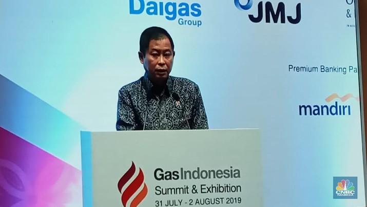 Adanya temuan baru dan dikebutnya beberapa proyek pengembangan, membuat Jonan yakin RI tak akan impor gas dalam jangka waktu lama