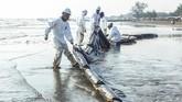 Pertamina Hulu Energi Offshore North West Java bekerjasama dengan OSCT berupaya kerasmeminimalisasi dampak tumpahan minyak dengan pemasangan Oil Boom di setiap pesisir pantai sebagai upaya percepatan penanganan tumpahan minyak mentah. (ANTARA FOTO/M Ibnu Chazar)