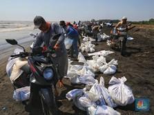 Pertamina Angkut 4900 Ton Tumpahan Minyak di Pantai Karawang