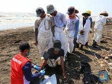 11 Desa Terkena Tumpahan Minyak, Pertamina Siapkan Kompensasi