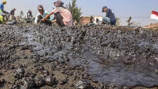 FOTO: Kerja Keras Bersihkan Tumpahan Minyak di Karawang