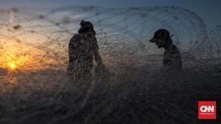 Nelayan Tewas Diterkam Buaya Sehabis Memancing