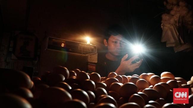 PLN menyatakan akan memberikan kompensasi terkait listrik padam. Nilai kompensasi diperkirakan mencapai Rp1 triliun.(CNN Indonesia/Daniela Dinda)