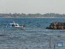 Ancaman Tsunami Raksasa Mencuat di RI, Ini Wilayahnya!