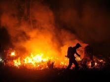 Kebakaran Hutan & Lahan Makin Parah, ini 4 Perintah Jokowi