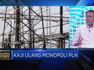 Dewan Energi Nasional: Sulit jika PLN Tidak Monopoli