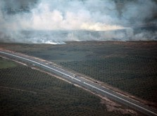 Tanah Bakal Kena Pajak Progresif, Pengembang Protes