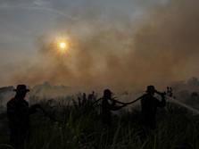 Lahan Terbakar, Bagaimana Nasib Pasokan Kayu Sinar Mas?