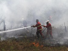 LIVE NOW! Benarkah Indonesia Darurat (Lagi) Kebakaran Hutan?