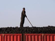 3 Perusahaan Batu Bara Telah Ajukan Perpanjangan Kontrak
