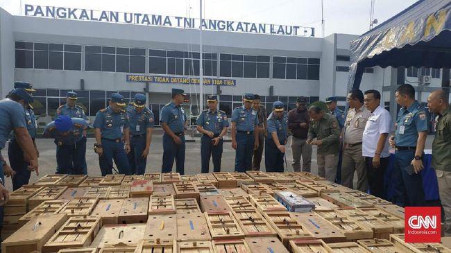 TNI AL Gagalkan Penyelundupan 88 Ekor Ayam Adu Thailand