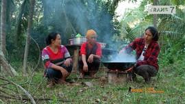 VIDEO: Panen Kepiting sampai Tai Minyak di Luwuk