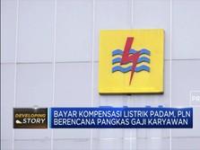 Bayar Kompensasi, PLN Pangkas Gaji Karyawan