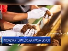 Langkah Gesit Produsen Rokok Jajal Pasar India & China