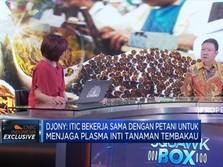 Indonesian Tobbaco Siap Tembus Pasar China Dan India