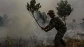 Personel TNI dari Kodim 0301 Pekanbaru juga membantu memadamkan api yang membakar semak belukar di lahan gambut. Selain dengan air, pemadaman juga dilakukan dengan cara sederhana yakni dengan ranting pohon. (ANTARA FOTO/Rony Muharrman)