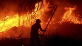 Kebakaranterjadi di kawasan gambut di desa Pulau Semambu, Ogan Ilir, Sumatera Selatan. Tampak seorang warga tengah memadamkan api dengan alat sederhana. (ANTARA FOTO/Ahmad Rizki Prabu)